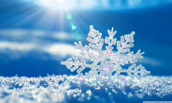 snowflake-wallpaper-1280x768