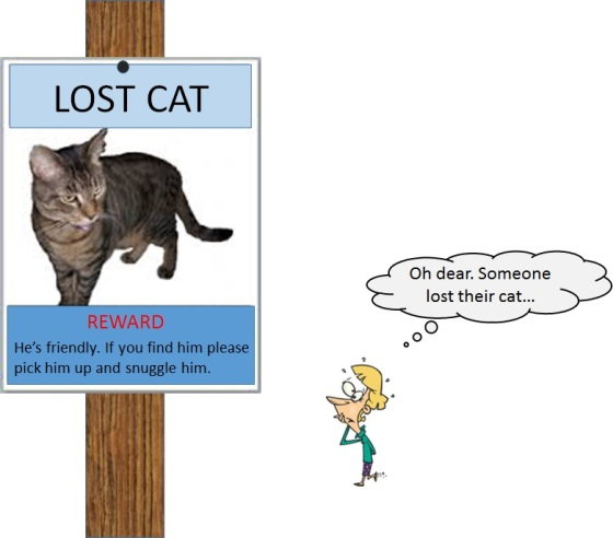 lost cat lady